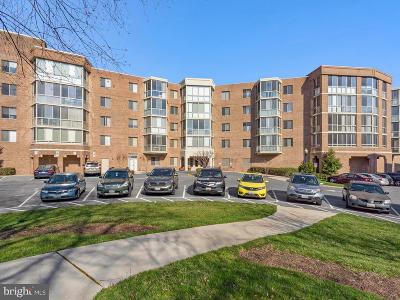 Silver Spring Condo For Sale: 2904 N Leisure World Boulevard #302