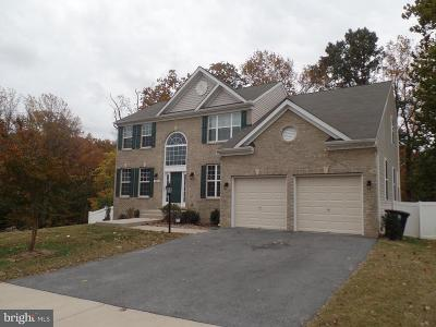 Fort Washington Single Family Home For Sale: 604 Digges Lane
