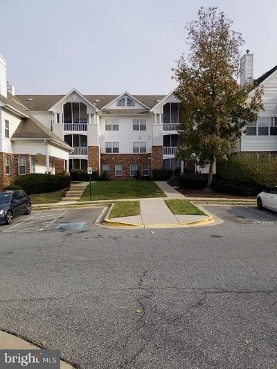 Prince Georges County Condo For Sale: 6512 Lake Park Drive #2I