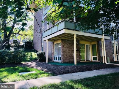 District Heights Rental Active Under Contract: 7242 Donnell Place #A