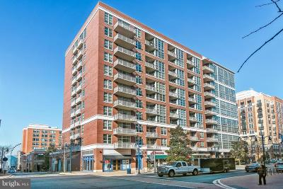 Prince Georges County Condo For Sale: 157 Fleet Street #509