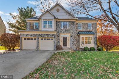 Fort Washington Single Family Home For Sale: 9903 Edgewater Terrace