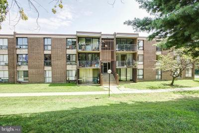 Hyattsville Condo For Sale: 7951 Riggs Road #8