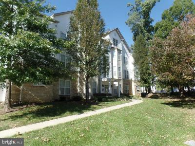 Bowie Rental For Rent: 15613 Everglade Lane #G303