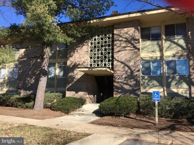 District Heights Condo Active Under Contract: 7202 Donnell Place #D