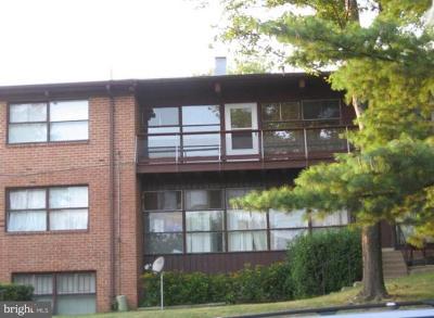 Hyattsville Rental For Rent: 1800 Drexel Street #201