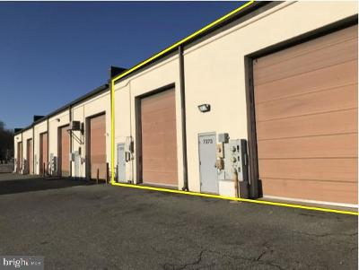 Anne Arundel County, Calvert County, Charles County, Prince Georges County, Saint Marys County Commercial For Sale: 7373 & 7375 Old Alexandria Ferry Road #8-B, 9-B