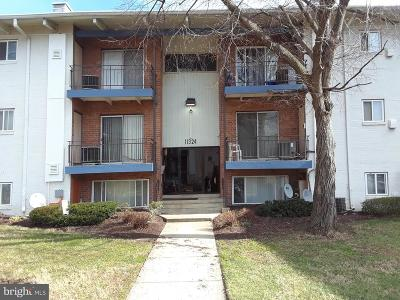Beltsville Rental For Rent: 11324 Cherry Hill Road #2-O20