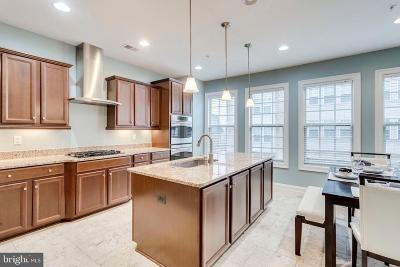Prince Georges County Condo For Sale: 503 Rampart Way