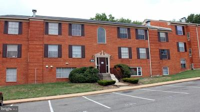 Prince Georges County Condo For Sale: 3811 Swann Road #T