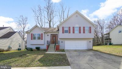 Upper Marlboro Single Family Home For Sale: 11509 W Branch Drive