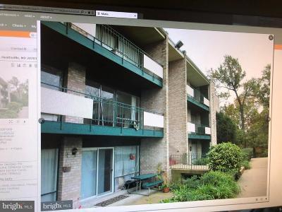 Hyattsville Rental For Rent: 9274 Adelphi Road #304