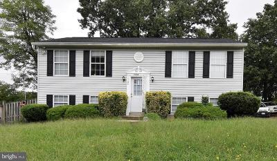 Capitol Heights Single Family Home For Sale: 7104 Walker Mill Road