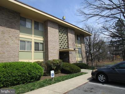 Forestville Condo Under Contract: 7262 Donnell Place