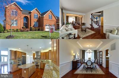 Upper Marlboro Single Family Home For Sale: 4006 Rolling Paddock Drive