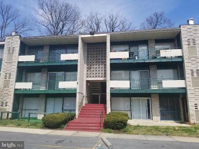 Hyattsville Condo For Sale: 9284 Adelphi Road #1