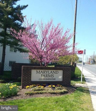 Beltsville Rental For Rent: 11372 Cherry Hill Road #1O102