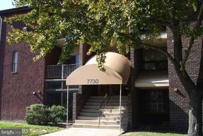 Greenbelt Rental For Rent: 7730 Hanover Parkway #303