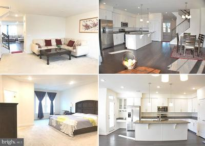 Prince Georges County Condo For Sale: 3306 Tribune Court #UNITD