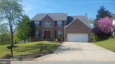 Fort Washington Single Family Home For Sale: 202 Woodgreen Circle