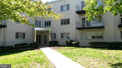 Hyattsville Condo For Sale: 1009 Chillum Road #314