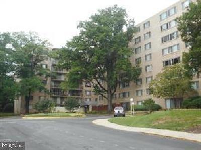 Hyattsville Rental For Rent: 4410 Oglethorpe Street #617
