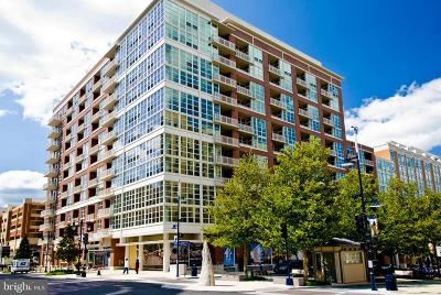 Prince Georges County Condo For Sale: 157 Fleet Street #208