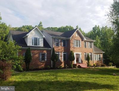 Accokeek Single Family Home For Sale: 2800 Accokeek Road W