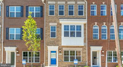 College Park, Greenbelt Townhouse For Sale: 4703 Cherokee Street