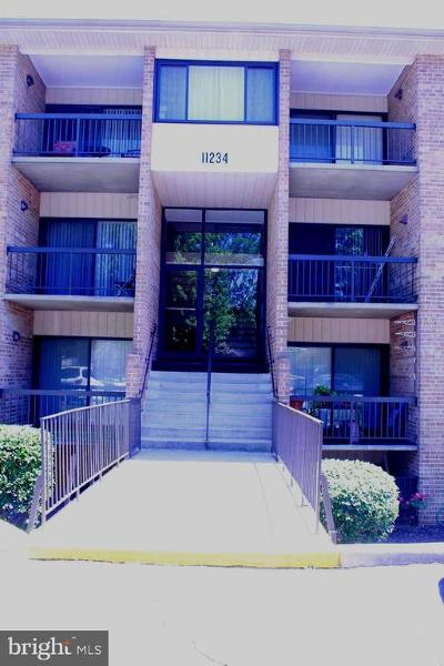 Beltsville Rental For Rent: 11234 Cherry Hill Road #204