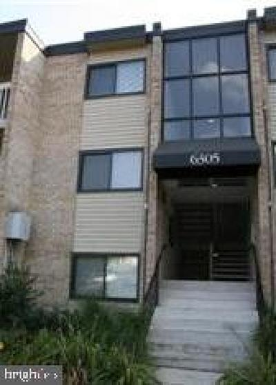 District Heights Rental For Rent: 6305 Hil Mar Drive #2-12