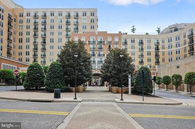 Prince Georges County Condo For Sale: 155 Potomac Passage #434