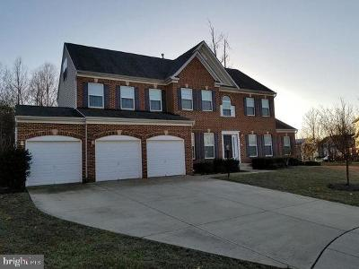 Accokeek Single Family Home For Sale: 702 Manokeek Court