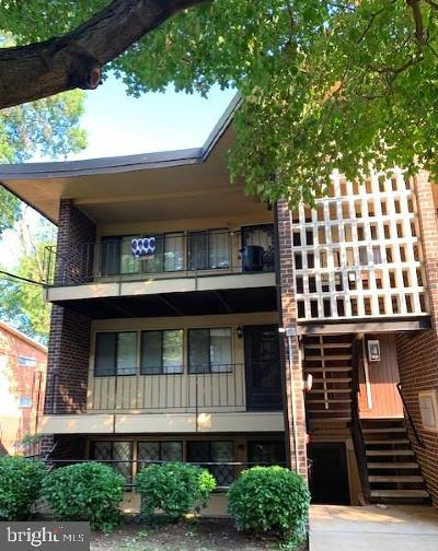 Suitland Rental For Rent: 3934 Stone Gate Drive #C