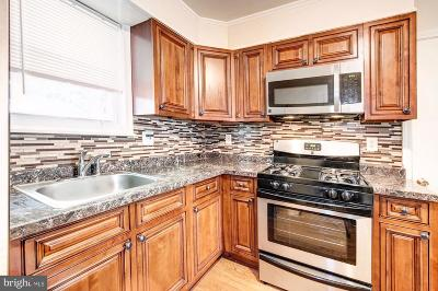 Prince Georges County, Charles County Single Family Home For Sale: 205 Cabin Branch Road