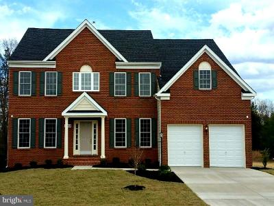 Prince Georges County Single Family Home For Sale: 10418 Sarah Landing Drive