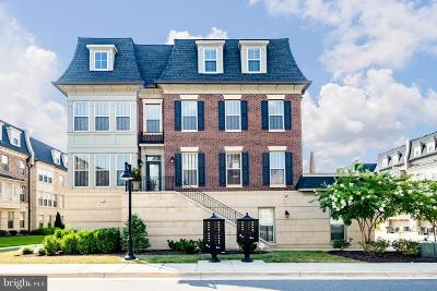 Prince Georges County Condo For Sale: 615 Fair Winds Way #250