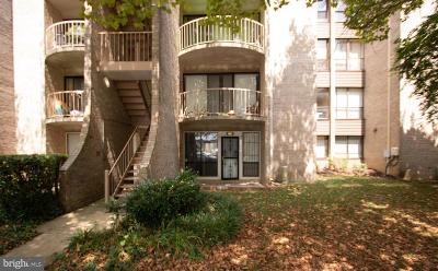 Temple Hills Condo For Auction: 3325 Huntley Square Drive #T