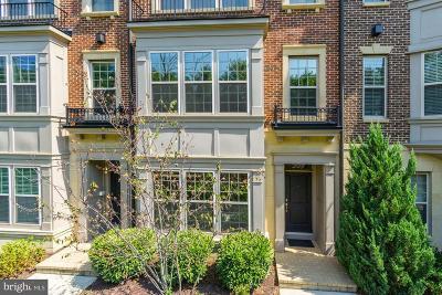 Oxon Hill Condo For Sale: 509 Overlook Park Drive #43