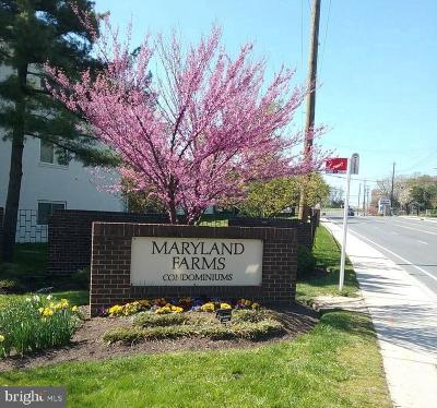 Beltsville Rental Under Contract: 11372 Cherry Hill Road #1O101
