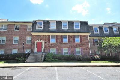 College Park Rental For Rent: 6036 Westchester Park Drive #101