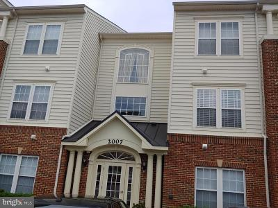Bowie Rental For Rent: 2007 Connor Court #701C