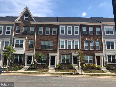 Prince Georges County Townhouse For Sale: 7165 Brick Kiln Circle