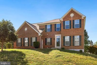Clinton Single Family Home For Sale: 7001 Saddlebow Court