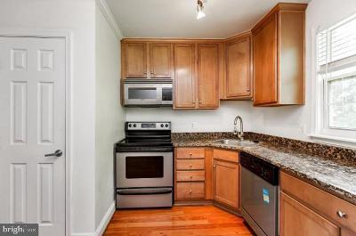 Laurel Rental For Rent: 19 Post Office Avenue #204