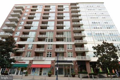 Prince Georges County Condo For Sale: 157 Fleet Street #1104