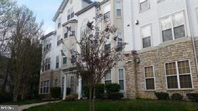Bowie Rental For Rent: 15606 Everglade Lane #C-102