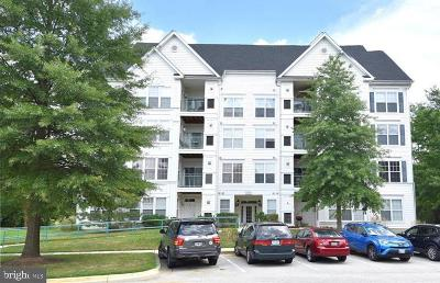 Bowie Rental For Rent: 15620 Everglade Lane #303