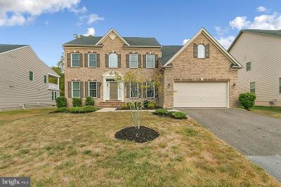 Upper Marlboro Single Family Home For Sale: 718 Ardonia Terrace