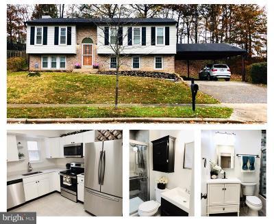 Laurel Single Family Home For Sale: 6320 Sandy Street